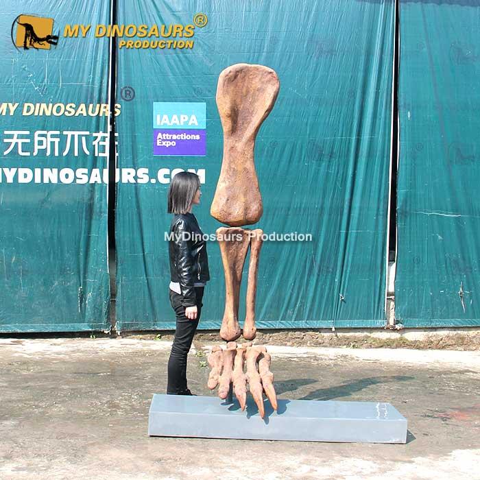 Dinosaur Leg Fossil 1