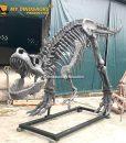 T rex Skeleton Sculpture 1