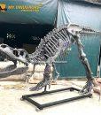 T rex Skeleton Sculpture 2