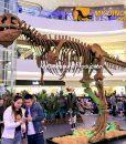 animatronic T REX skeleton 1