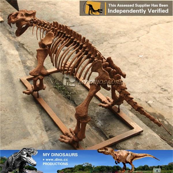 Lystrosaurus Fossil Skeleton