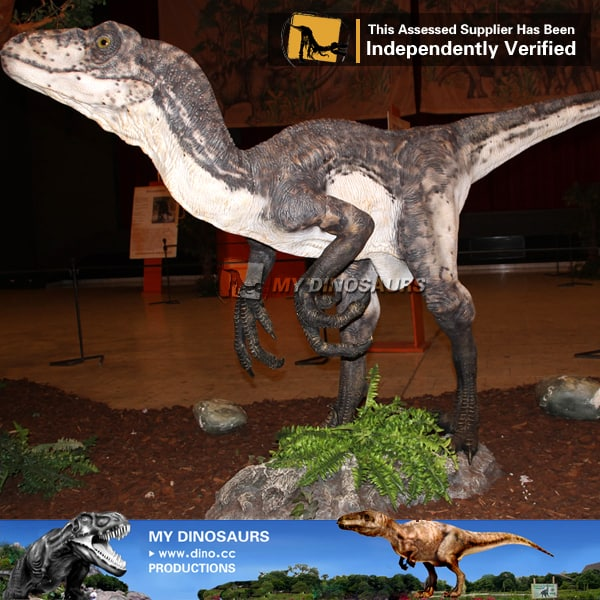 Life Size Dinosaur Deinonychus