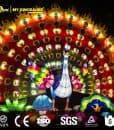 Chinese lantern Peacock 2