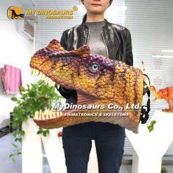 Dinosaur helmet 1