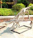 Gasosaurus skeleton