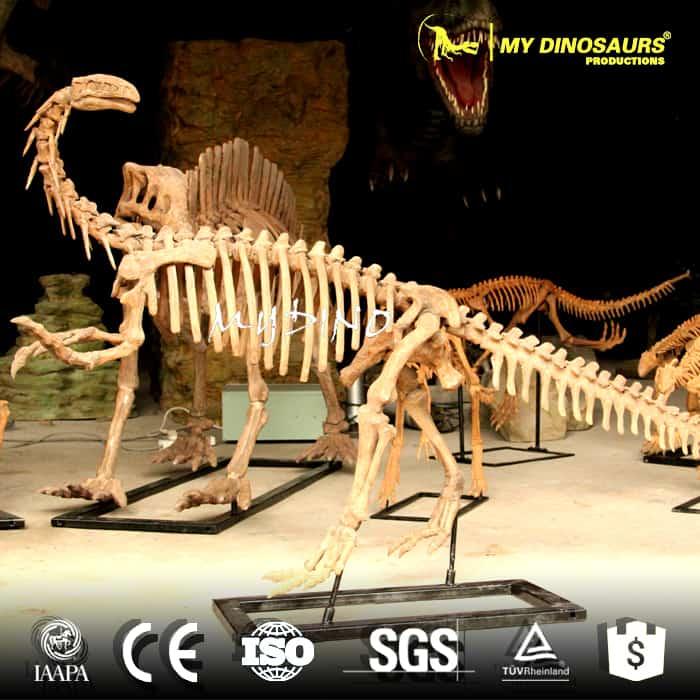 Plateosaurus skeleton