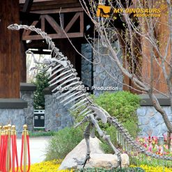 Yunnanosaurus skeleton