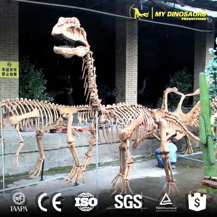 animated dilophosaurus skeleton