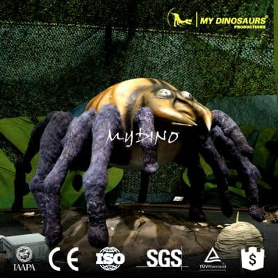Animated insect spider model