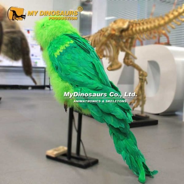 animatronic parrot 1