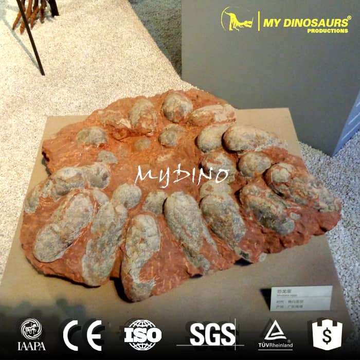 dinosaur fossils eggs for sale
