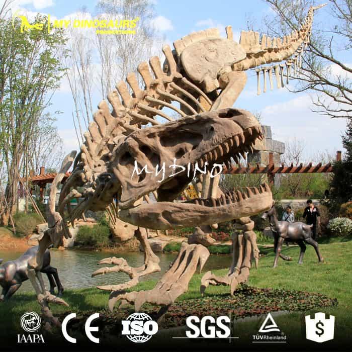 Yangchuanosaurus skeleton
