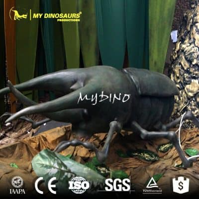 Giant insect beetle