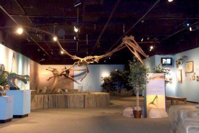 Arizona Museum of Natural History2