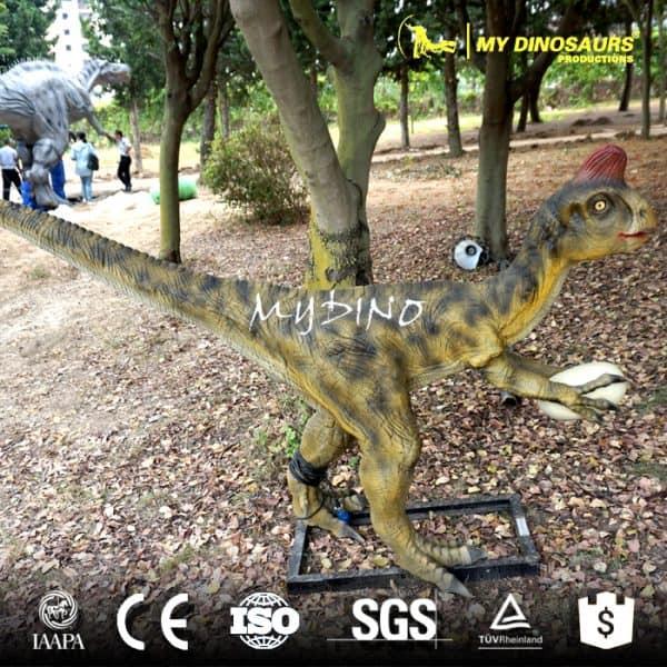 Animatronics Dinosaur Oviraptor for Sale