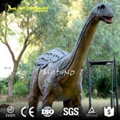 Saltasaurus model
