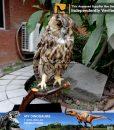 animatronic owl