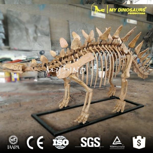 stegosaurus skeleton for sale
