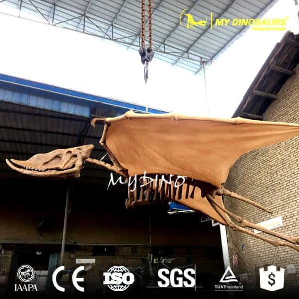 hanging flying pterosaur skeleton