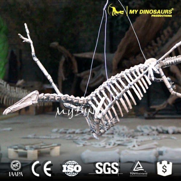 hanging pterosaur skeleton for sale