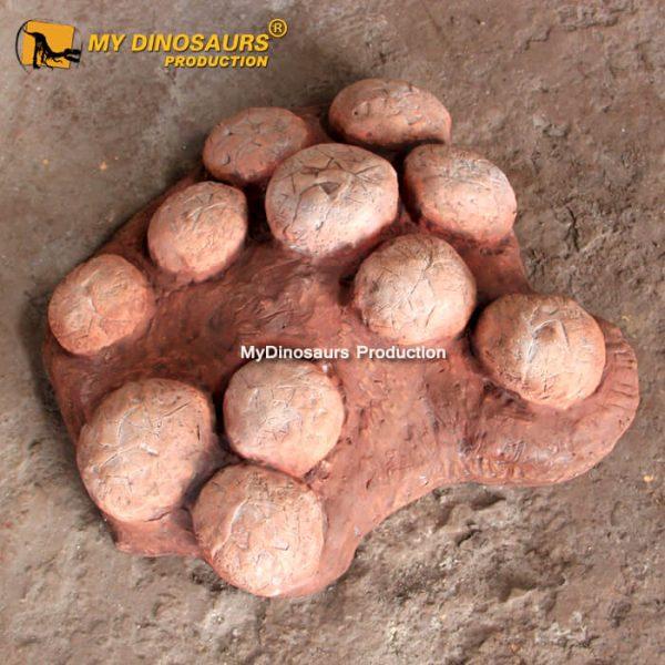 Dinosaur egg fossils