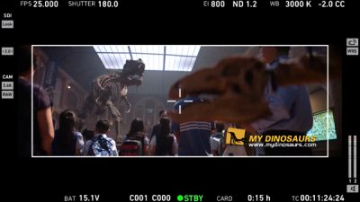 Dinosaur skeleton movie props