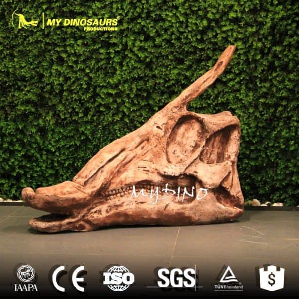 Hadrosaur Skull 1