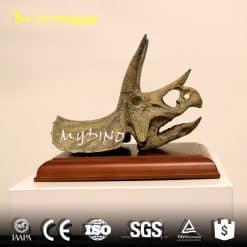 Mini triceratops skull 1
