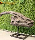 Parasaurolophus Skull