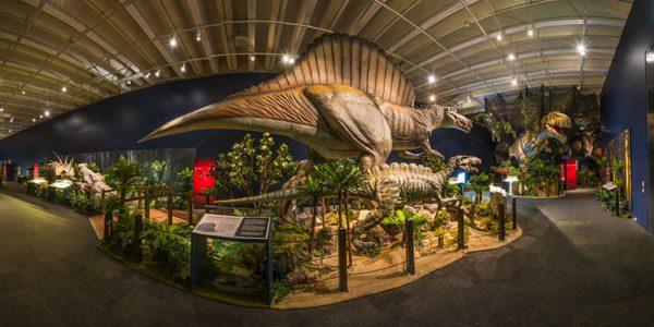 Dinosaur exhibition attractions
