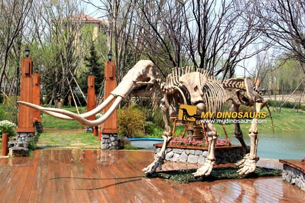 Ice age exhibition mammoth skeleton
