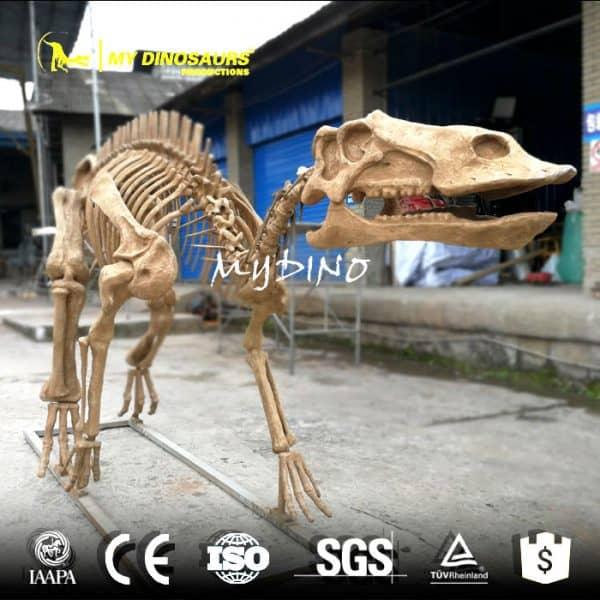 maiasaura skeleton 1