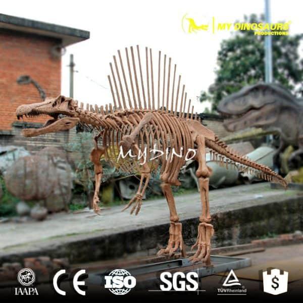 spinosaurus skeleton (3)