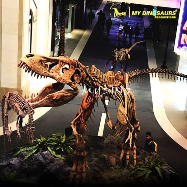 Fighting dinosaur skeletons 1