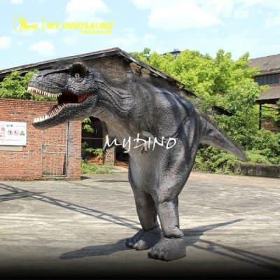 adult dinosaur costume