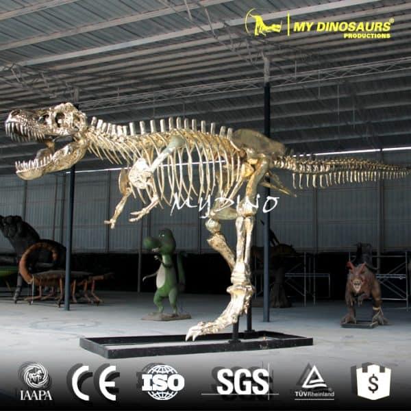 show case dinosaur skeleton