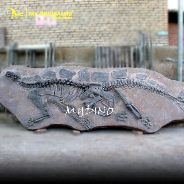 Stegosaurus Fossil Wall