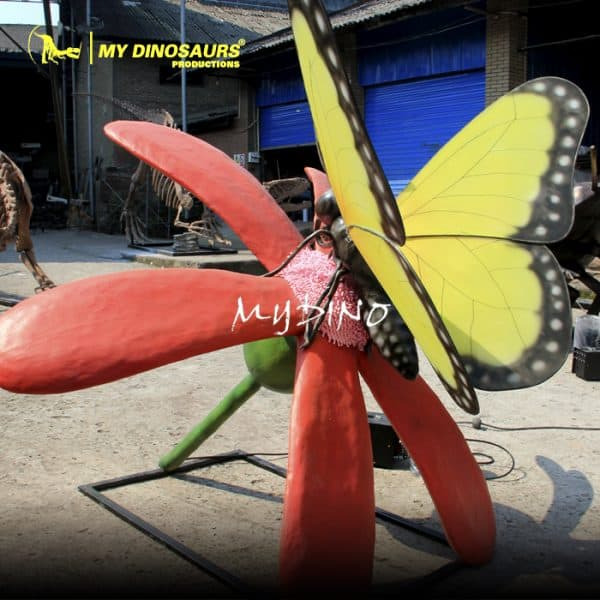 butterfly insect 1