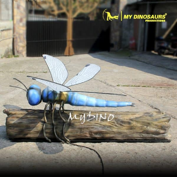 giant dragonfly 1