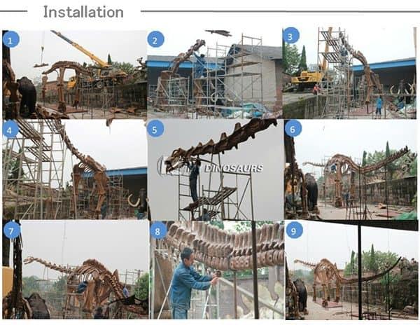 dinosaur skeleton installation