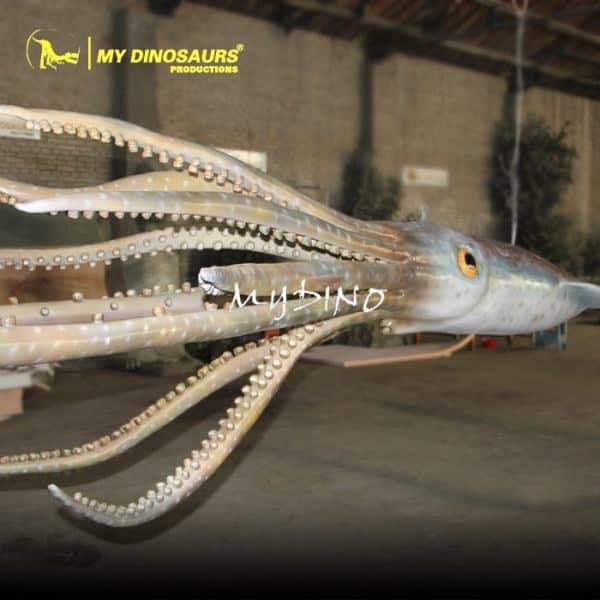 marine animal giant squid 1