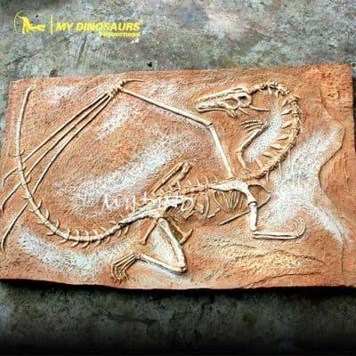 Dragon fossil wall