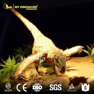 Feathered Velociraptor AD230