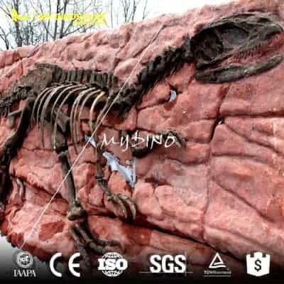 dinosaur fossil DS 049