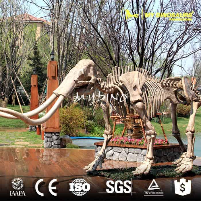 mammoth skeleton AS 002