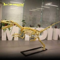 gold raptor skeleton 1