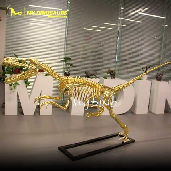 gold raptor skeleton 1