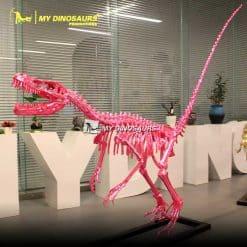 Pink Dinosaur Skeleton 1