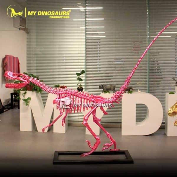Pink Dinosaur Skeleton 2