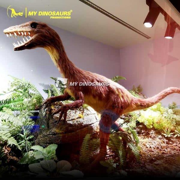 Sinornithosaurus model 1